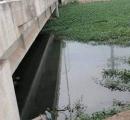 Thanh niên chết dưới đầm nước, trên người có vết bầm