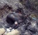 Bộ xương cháy đen ở Hòa Bình: Nạn nhân chết cách đây đã 2 năm