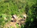 Bí ẩn bao trùm vụ giết 4 người trong một nhà rúng động ở Nghệ An