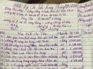 Nhật ký chi tiêu của '1 gia đình thu nhập 12 triệu đồng/tháng' gây tranh cãi
