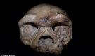 Hộp sọ tìm thấy ở Trung Quốc có thể viết lại lịch sử loài người