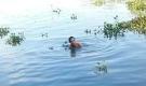 Hàng chục người ngụp lặn tìm bé trai mất tích dưới sông