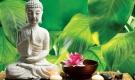5 thói quen giúp bạn cân bằng cuộc sống, thanh tịnh tâm hồn
