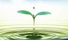 Nước - một chữ ngắn ngủi, nhưng hàm chứa kho trí tuệ đời người: Những ngày dịch bệnh lại càng thấm thía!
