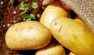 Những điều 'đại kị' khi ăn khoai tây mà rất nhiều người Việt vẫn mắc phải