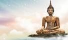 Phật dạy: Càng khẩu nghiệp, tức giận bao nhiêu thì rồi vinh hoa phú quý cũng theo đó mà mất đi