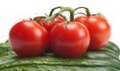 """Lành như cà chua nhưng ăn sai cách cũng thành """"độc dược"""""""