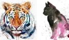 Tử vi thứ Sáu ngày 10/7/2020 của 12 con giáp: Dần gặp thị phi, Mão cẩn trọng tiền nong