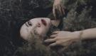 Đàn bà đã yêu thì phải chấp nhận đau, yêu được thì bỏ được người đàn ông vô tâm