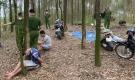 Vụ cảnh sát vây ráp sới bạc khủng trong rừng: Đại ca cầm đầu ra đầu thú sau 4 ngày bỏ trốn