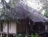 http://xahoi.com.vn/con-trai-doat-mang-cha-luc-nua-dem-212274.html