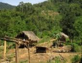 http://xahoi.com.vn/tinh-yeu-lac-loi-va-vu-tham-sat-kinh-hoang-xu-nghe-213774.html
