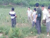http://xahoi.com.vn/bang-hoang-phat-hien-nhieu-bo-phan-thi-the-nguoi-tren-suoi-216831.html
