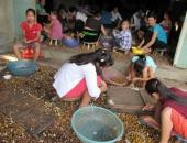 http://xahoi.com.vn/nhan-nha-boc-long-nhan-rung-rinh-tien-den-truong-231966.html