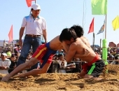 http://xahoi.com.vn/doc-dao-le-hoi-vat-lang-sinh-250771.html