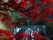 http://xahoi.com.vn/canh-dep-den-muc-khong-the-tin-noi-la-co-thuc-ban-da-biet-bao-nhieu-noi-trong-so-nay-256811.html