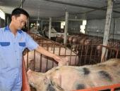http://xahoi.com.vn/soc-mat-10000-ty-dong-tu-cuoc-dai-khung-hoang-lon-263646.html