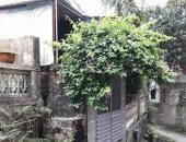 http://xahoi.com.vn/be-gai-4-lan-bi-ong-to-truong-xam-hai-bat-tam-giam-nghi-can-263759.html