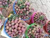 http://xahoi.com.vn/5000-dong-qua-man-van-ban-chay-han-264058.html