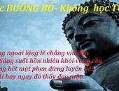http://xahoi.com.vn/loi-phat-day-ve-cach-buong-bo-272244.html