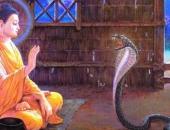 http://xahoi.com.vn/nho-dung-bao-gio-noi-xau-nguoi-khac-va-cung-dung-quan-tam-ai-do-noi-xau-minh-272502.html