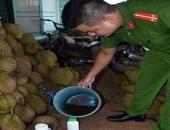 http://xahoi.com.vn/tam-hoa-chat-vao-hang-tan-sau-rieng-de-chuyen-ra-ha-noi-ban-277764.html