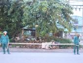 http://xahoi.com.vn/binh-duong-phat-hien-nguoi-dan-ong-tu-vong-tren-bai-co-279138.html