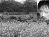 https://xahoi.com.vn/chuyen-it-biet-ve-nhung-ngay-cuoi-doi-cua-khanh-trang-285516.html