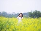 http://xahoi.com.vn/ngan-ngo-ngam-canh-dong-hoa-cai-vang-no-ro-o-ngoai-thanh-ha-noi-286780.html