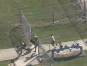 Mỹ: Xả súng trong trường học, 17 người chết