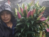 http://xahoi.com.vn/nguoi-dan-tay-tuu-khoc-rong-phai-cam-ca-so-do-vi-hoa-ly-bung-no-day-ruong-sau-tet-293062.html
