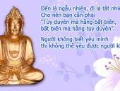 http://xahoi.com.vn/loi-phat-day-ve-tinh-yeu-dich-thuc-299237.html