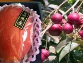 http://xahoi.com.vn/gioi-nha-giau-chi-tien-trieu-an-nhan-tim-xoai-do-307945.html