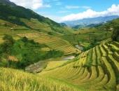 http://xahoi.com.vn/mu-cang-chai-dep-ngo-ngang-giua-mua-vang-niu-chan-moi-du-khach-312574.html