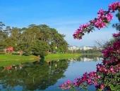 Hình ảnh Đà Lạt đẹp đến nao lòng trong sáng sớm giao mùa khiến ai cũng muốn xách balo lên và đi ngay