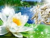 http://xahoi.com.vn/muon-duoc-binh-an-trong-cuoc-song-hay-hoc-cach-tu-tam-tao-nghiep-lanh-315243.html