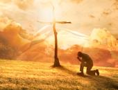 Lòng càng tham, sống càng khổ, biết đủ với hiện tại mới nghiệm được chân lý hạnh phúc