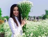 http://xahoi.com.vn/cuc-hoa-mi-chom-no-phu-sac-trang-tinh-khoi-goi-dong-ve-316901.html