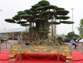 http://xahoi.com.vn/tuyet-tac-sieu-cay-dai-the-van-tung-dat-vang-gia-15-ty-dep-co-nao-317482.html