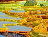 """""""Cánh đồng vàng"""" có vẻ đẹp kỳ lạ nhưng cũng 'bốc mùi' nhất hành tinh"""
