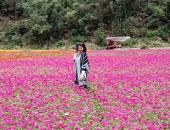 Ngỡ lạc chốn thiên đường ở thung lũng hoa đẹp ngất ngây ở Lạng Sơn