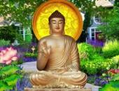 http://xahoi.com.vn/phat-day-muon-ngay-mai-giau-sang-hanh-phuc-hom-nay-hay-lam-ngay-nhung-viec-nay-325399.html