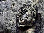 Cảnh tượng đá nở hoa có 1-0-2 tại Trung Quốc