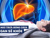 http://xahoi.com.vn/ngu-trua-dung-cach-giup-gan-khoe-manh-rat-nhieu-nguoi-van-mac-sai-lam-ma-khong-he-biet-335949.html