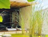 http://xahoi.com.vn/diem-mat-nhung-homestay-xinh-xan-khien-ban-quen-loi-ve-o-phan-thiet-337670.html