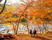 http://xahoi.com.vn/6-thien-duong-ngam-mua-thu-dong-bac-a-338193.html