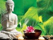 http://xahoi.com.vn/5-thoi-quen-giup-ban-can-bang-cuoc-song-thanh-tinh-tam-hon-338792.html