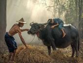 http://xahoi.com.vn/3-cau-noi-vo-tinh-cua-con-cai-khien-cha-me-dau-thau-tan-tam-can-341665.html