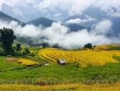 https://xahoi.com.vn/5-diem-den-mua-dep-ngo-ngang-ngay-tai-viet-nam-nen-di-ngay-keo-lo-344427.html