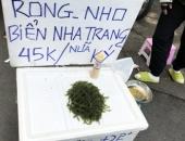 https://xahoi.com.vn/thuc-pham-nha-giau-tran-ra-via-he-voi-gia-re-beo-359436.html
